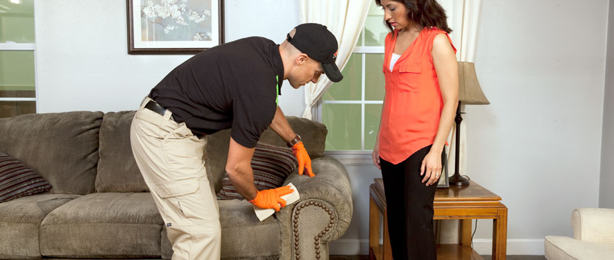 Pompano Beach, FL carpet upholstery cleaning